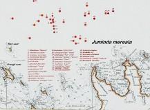 tallinskij_perekhod_map_05